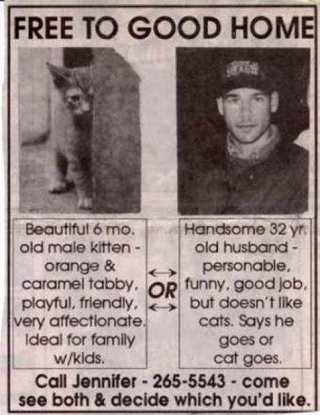 funny-headlines-6