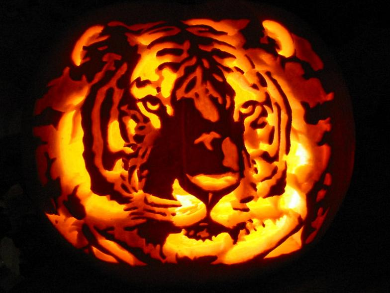 awesome-pumpkins-19