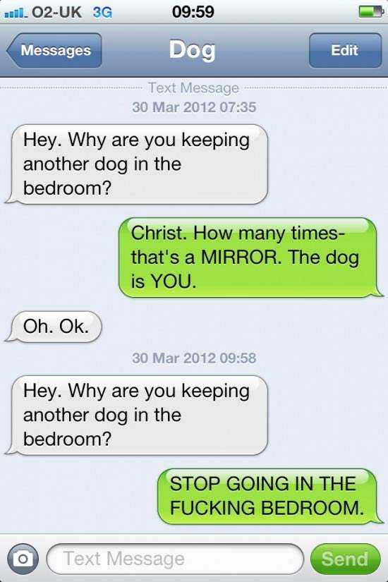 text-from-dog-5