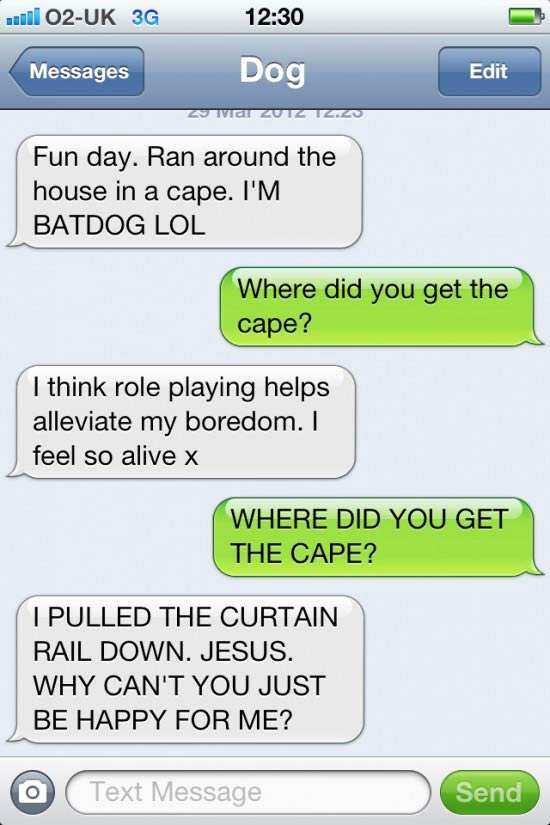 text-from-dog-6