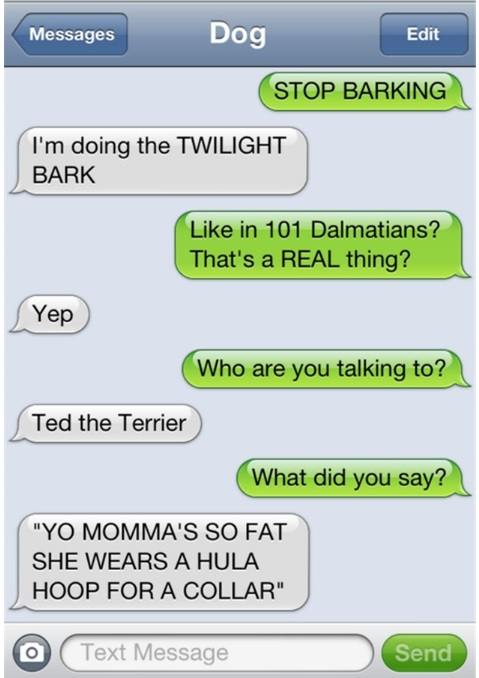 texts-from-dog-10