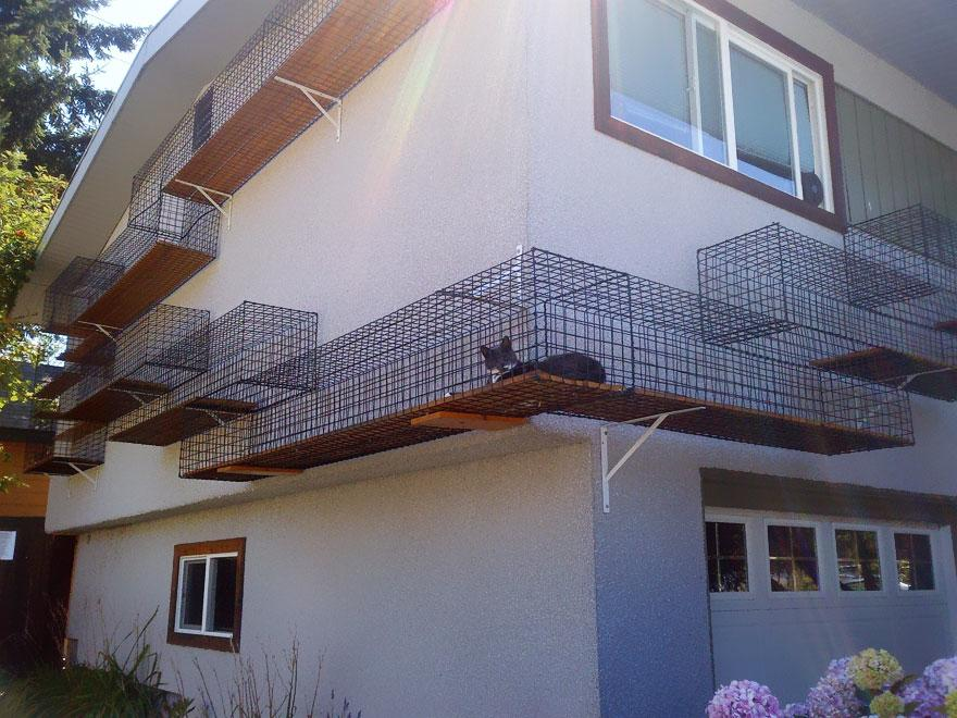 awesome-pet-owners-01