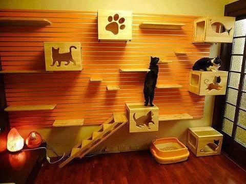 awesome-pet-owners-05