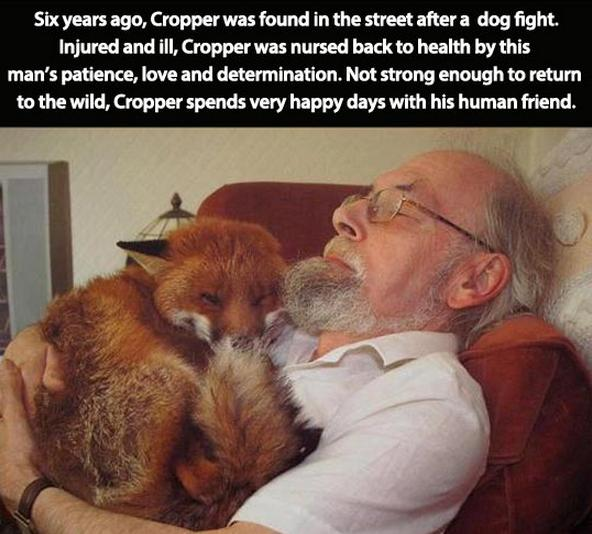 awesome-pet-owners-12