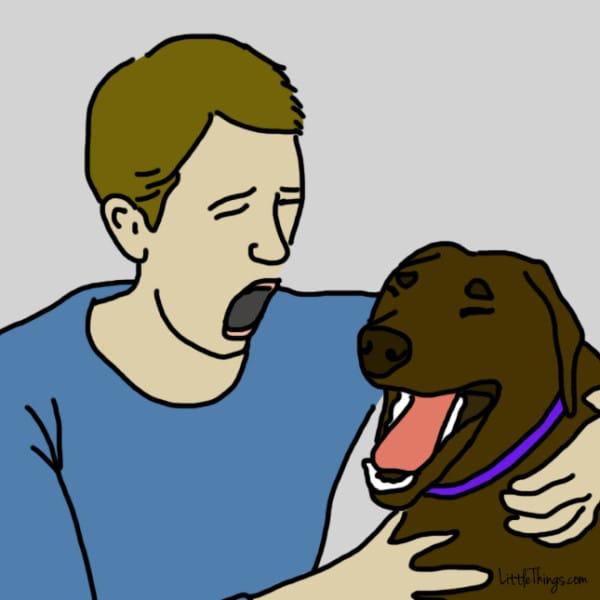 ama dog 2
