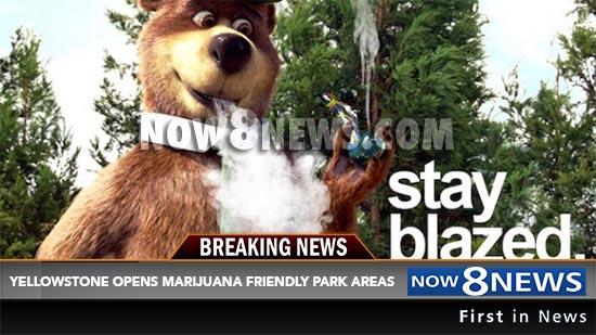 news blazed